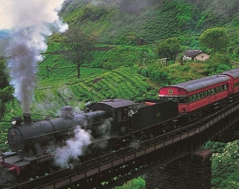 Sri Lanka Tour Packages, Sri Lanka Tours, Luxury holidays in Sri Lanka with See Asia Tours